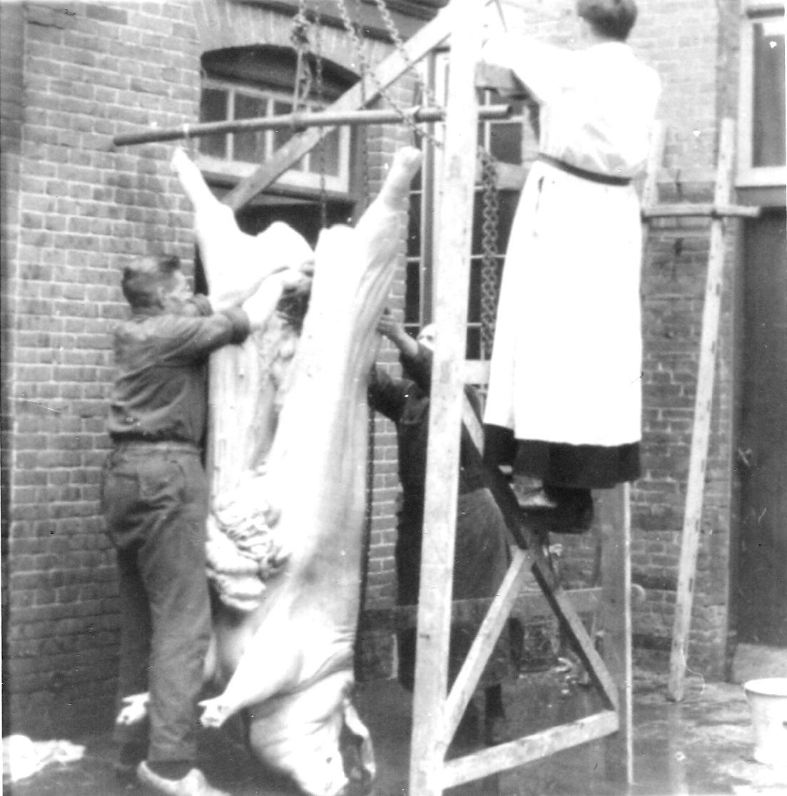 1946 Adriaan Cooijmans slacht een varken op de Ruwenberg