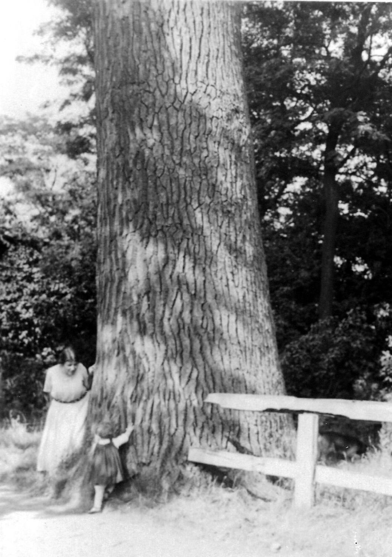 ca1960 mw Bink de Senarclens de Grancy met haar (klein) dochtertje bij den dikken boom bij Haanwijk