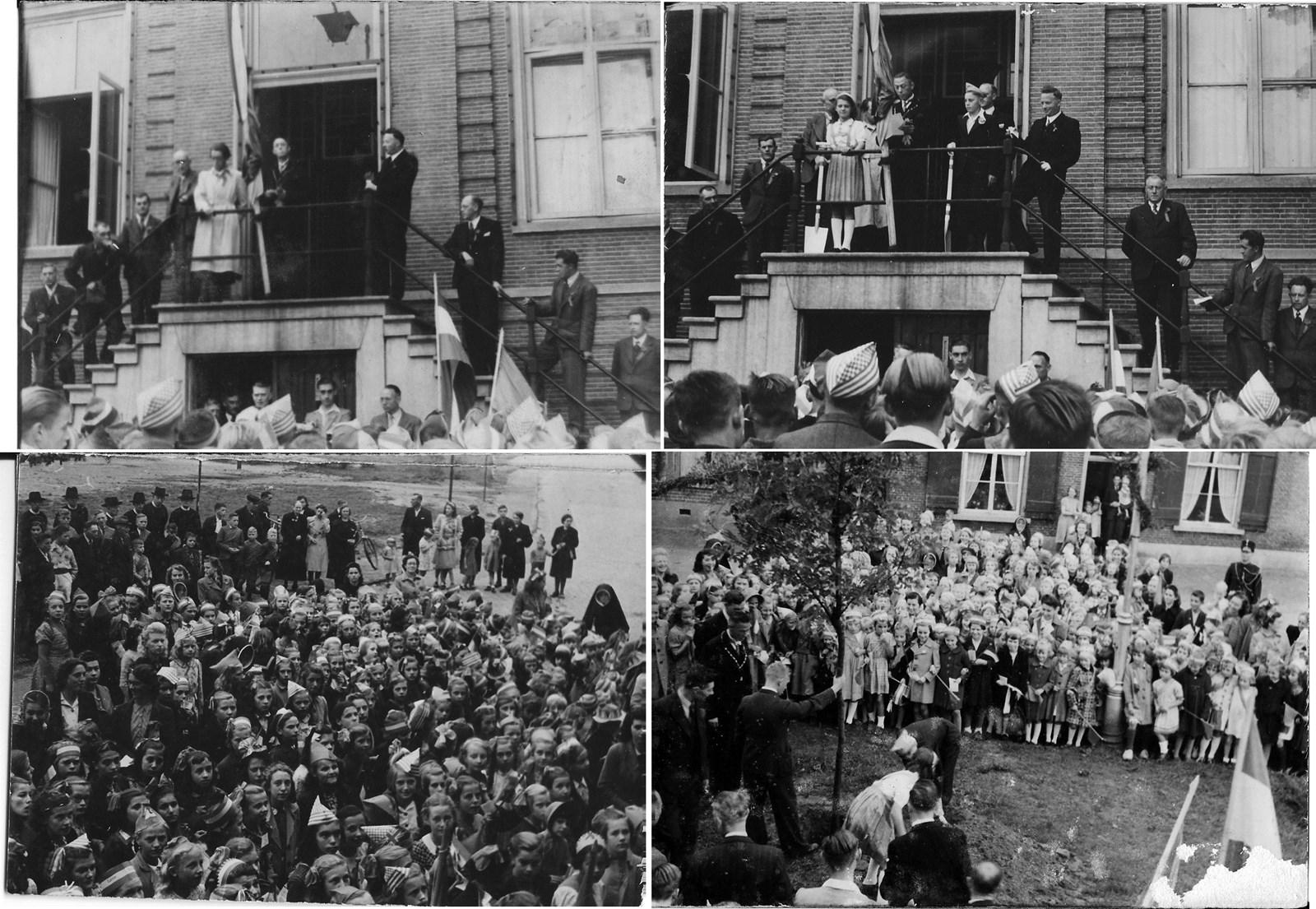 1945, 31 augustus, Koninginnedag, planten Bevrijdingsboom