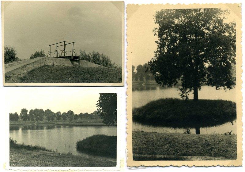 ca1955/60, de  Plas, van oude Dommelarm naar bezink Vijver.